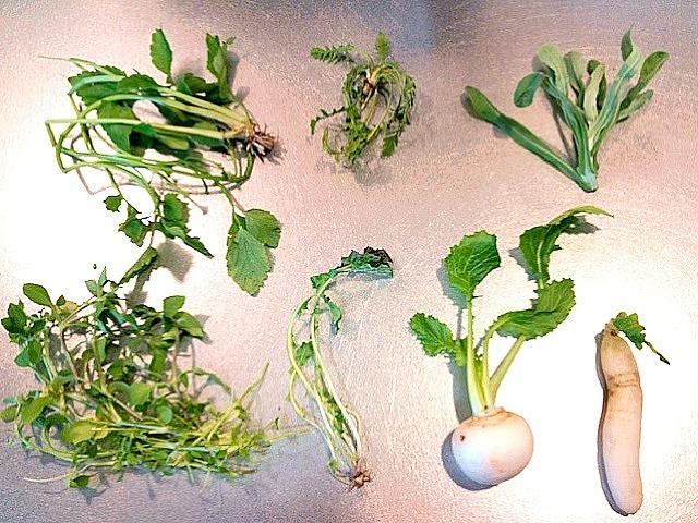 Japanese Culture: Seven herb rice porridge ( nanakusa gayu )
