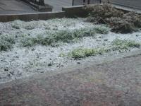 雪 2.jpg