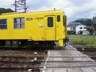 P1110212.JPG