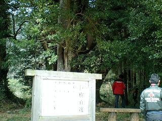 kyoboku.jpg