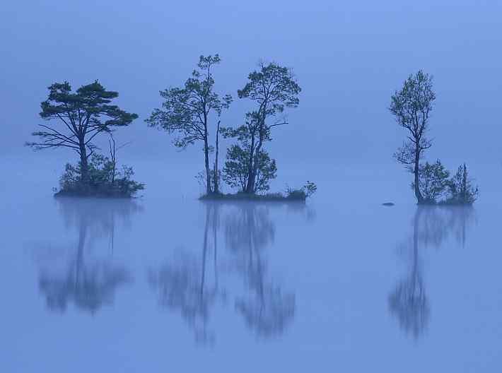 朝霧が流れる曽原湖   あやしい...