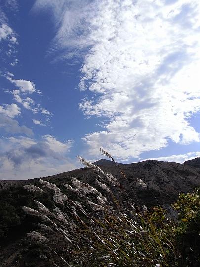 すすきの上に広がる秋空