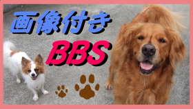 画像付きBBS.jpg