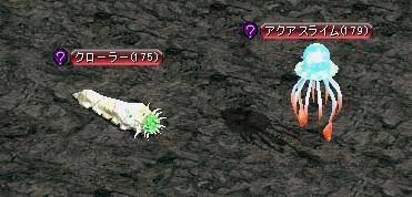 ミ:水母と芋虫.JPG