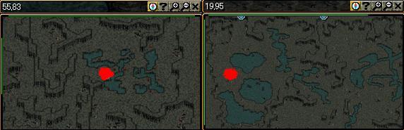 左がキャンサー気孔右がキャンサーの巣.JPG