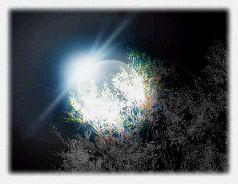 shining moon blue willful