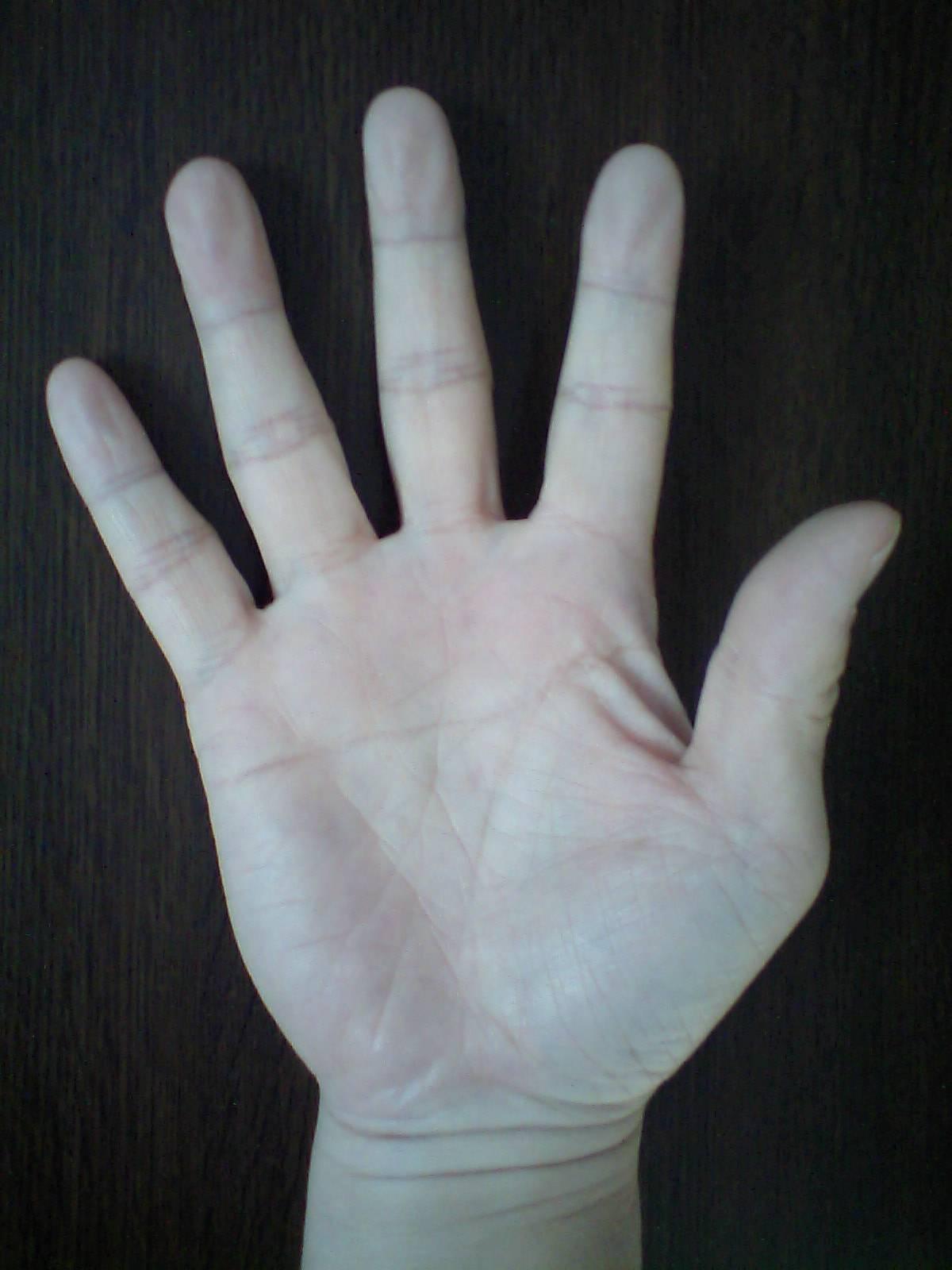 右手 ます かけ 線