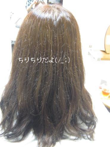 20100930 ビフォー びびり毛.jpg