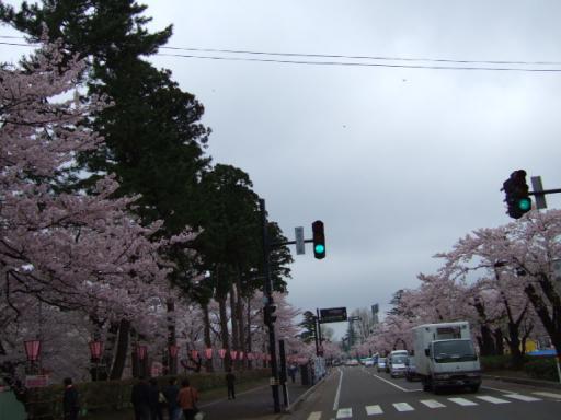 2008_04140051.JPG
