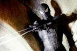 「 スパイダーマン3 /spiderman3(2007) 」ワールドプレミア・in・TOKYO 」