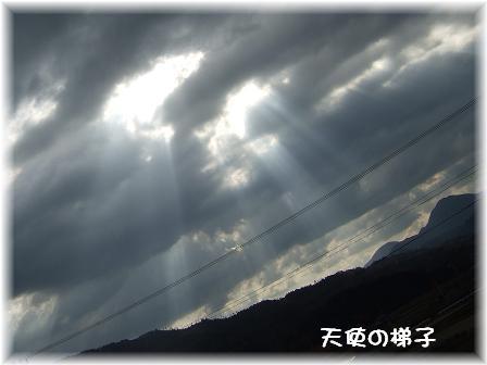 天使の梯子.JPG