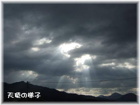 天使の梯子1.JPG