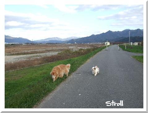 Stroll77.JPG