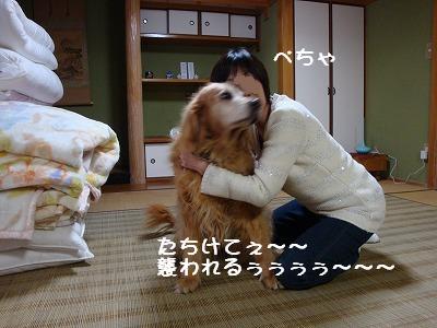 ぺちゃと菫.JPG