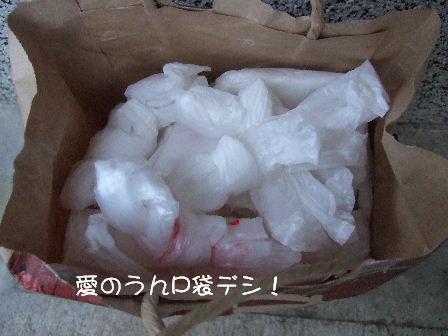 愛のうんP袋.JPG