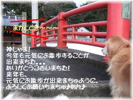 1お参り.JPG