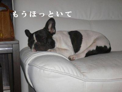 s-2009.07.19 100.jpg