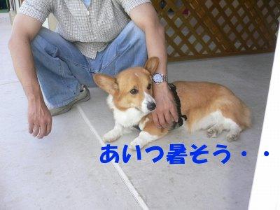 s-2009.10.04 019.jpg