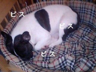 甘えん坊4