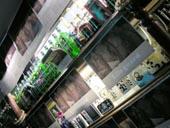 装飾後のLagoon店内