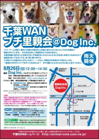 @doginc_poster.jpg