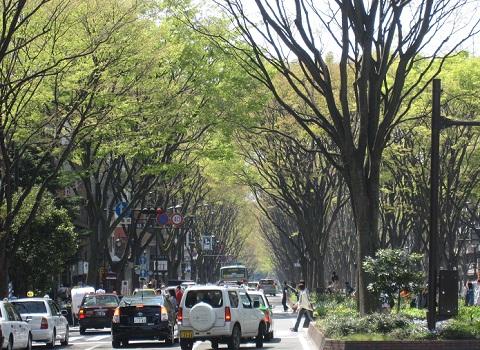 絵になる街、絵にならない街 [転載禁止]©2ch.netYouTube動画>1本 ->画像>56枚