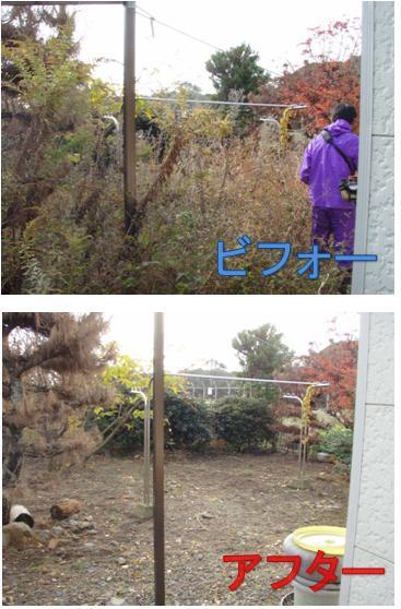 草刈3.jpg