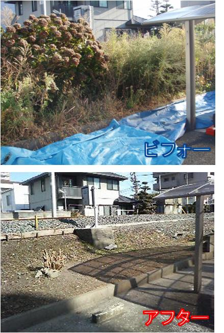 11月17日草刈り.jpg
