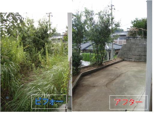 草刈り9月3日2.jpg