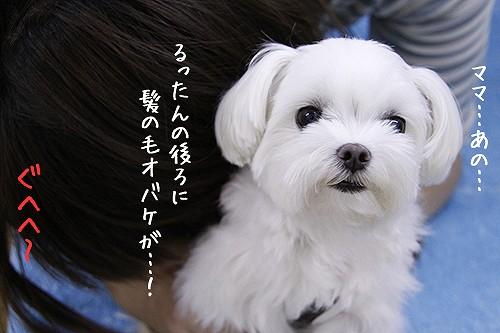 9-8-髪の毛オバケ.jpg