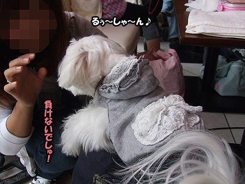 5-29-あいみちゃんと.jpg