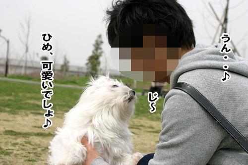 ひめちゃん.jpg