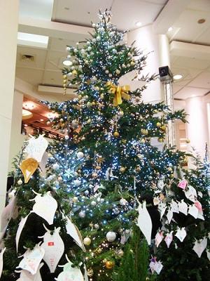 12-1 クリスマス1.jpg