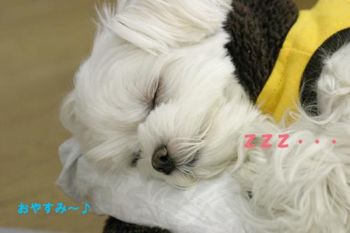 12-3-おやすみ.jpg