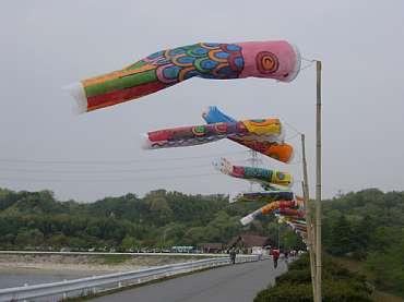 鯉のぼり  20060430