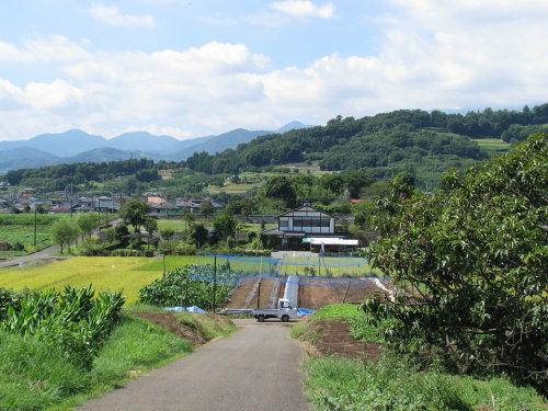 里山の秋.jpg