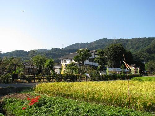 里山の秋2.jpg