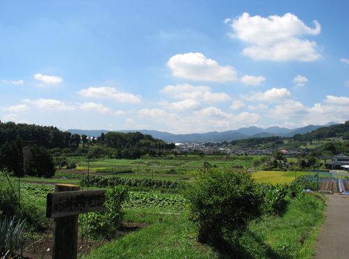 里山の秋3.jpg