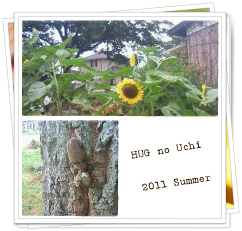 2011夏