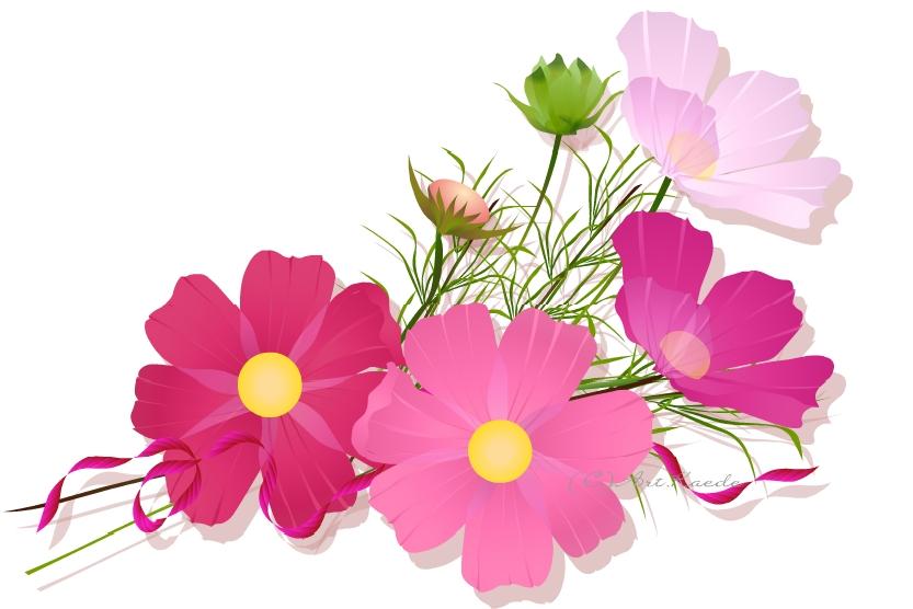「9月 花束 イラスト」の画像検索結果