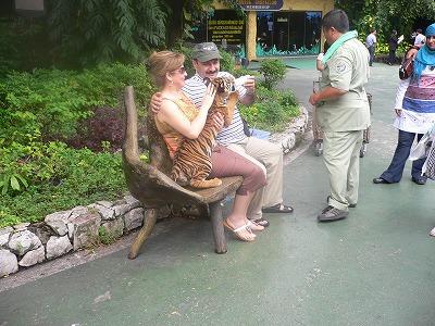 虎の赤ちゃんと記念撮影
