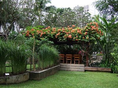 空中庭園2