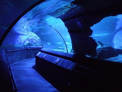 誰もいない海底トンネル