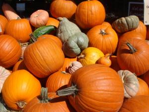 20 かぼちゃ.jpg