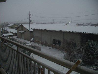 yuki 20081205 004.jpg