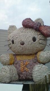 20090108 kagosima.jpg