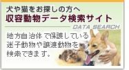 収容動物検索サイト