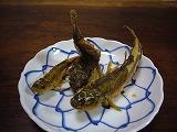 川魚.jpg