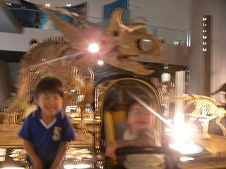 恐竜博物館二人で1