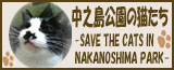 中之島公園の猫たち